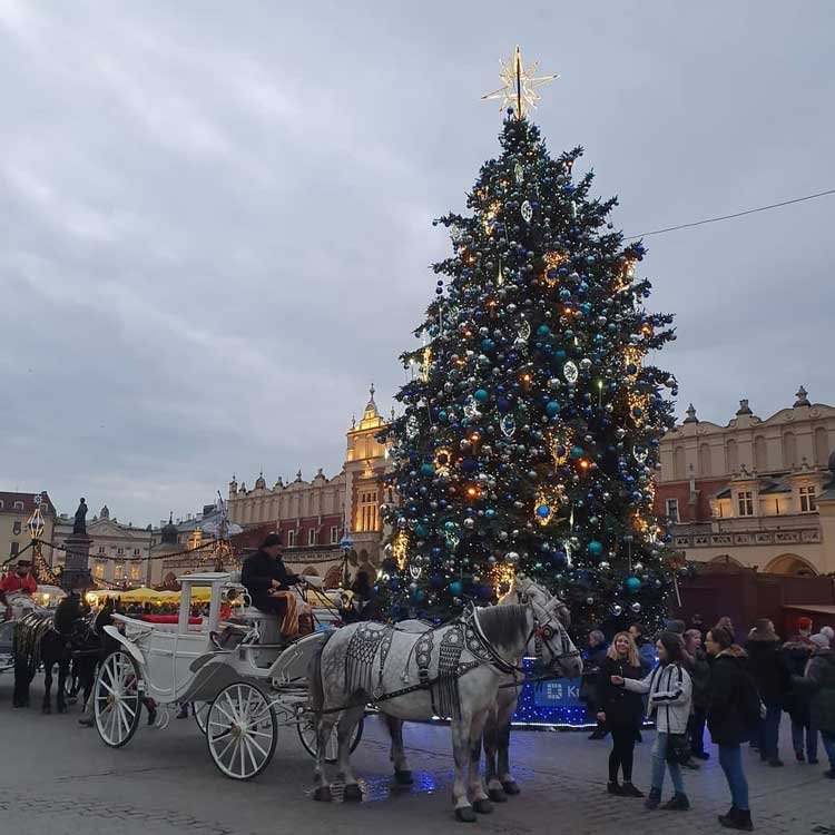 Куда поехать и что посмотреть в Польше зимой? 4