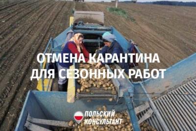 отмена карантина в Польше для сезонных работников с Украины
