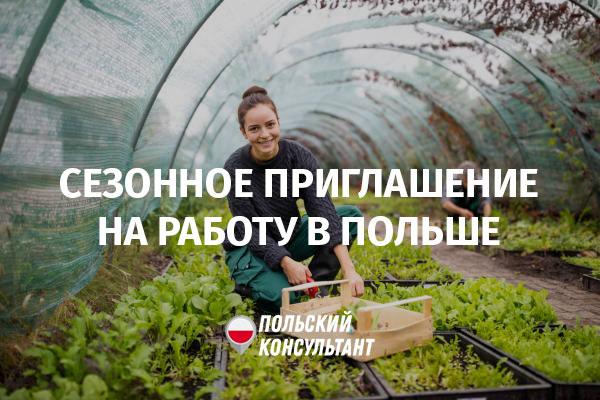 Сезонное приглашение в Польшу на работу