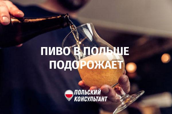 В Польше подорожает пиво