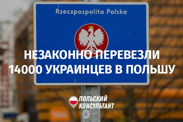 Создавали фиктивные компании и перевезли через польскую границу 14 тысяч человек