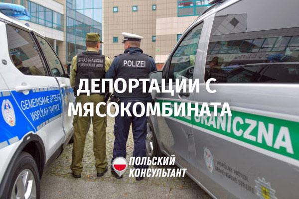 Странные проверки и депортации с мясокомбината в Хшануве