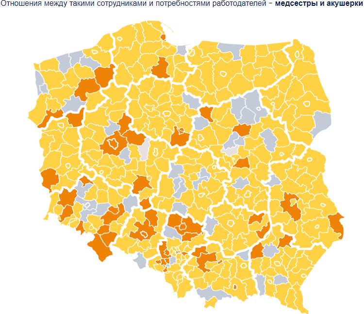 Barometr zawodow: 4 самые нужные профессии в Польше в 2021 году 2