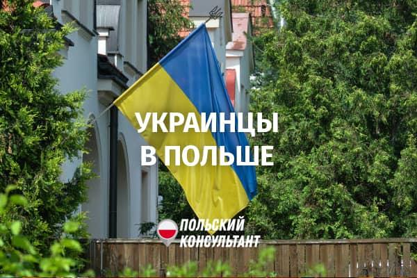 украинские заробитчане в Польше