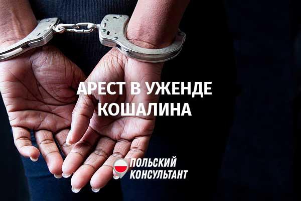 Карты за взятки. В Кошалине арестован глава департамента воеводского уженда 49