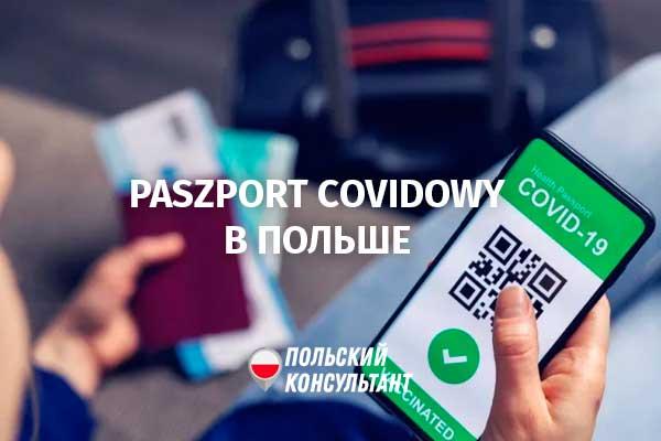 Европейские COVID-паспорта начали действовать в Польше и во всем ЕС 7