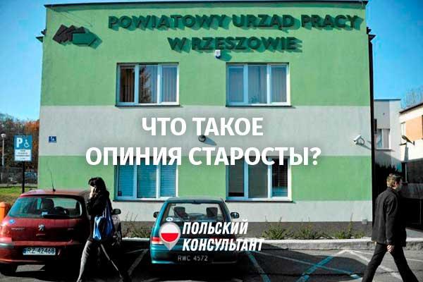 Что такое опиния старосты в Польше и как ее получить? 26