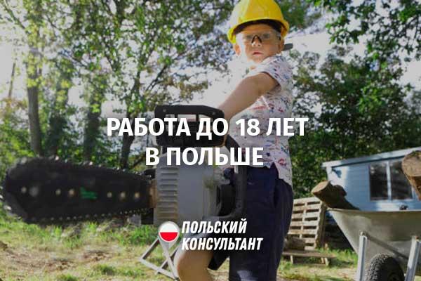 Несовершеннолетние работники: нюансы трудоустройства детей до 18 лет 23