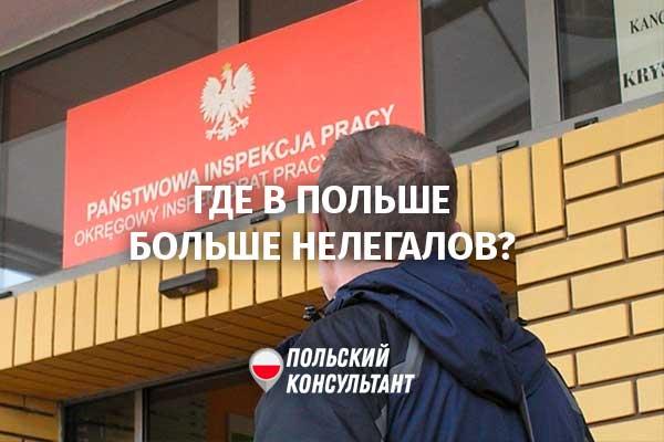 Серая зона-2021: Где в Польше работает больше всего нелегалов 31