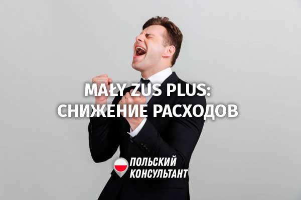 Экономим на взносах: Mały ZUS plus для предпринимателей в Польше 3